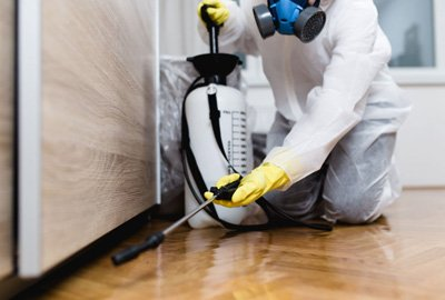 Advice About When You Need An Exterminator