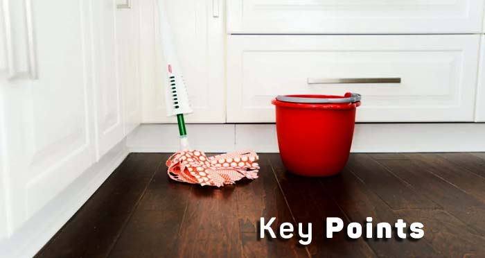 Key Points to Choose the Best Steam Mop for Hardwood Floors