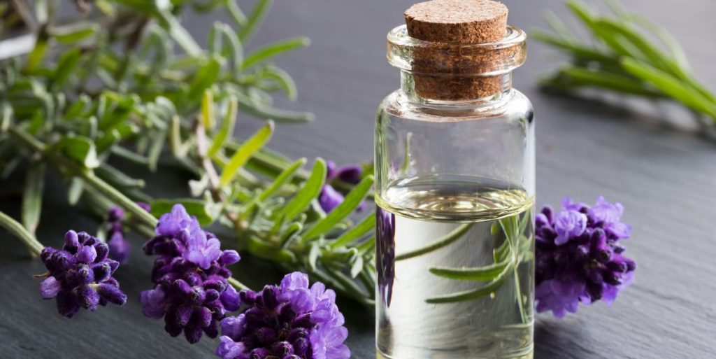 What is the most used essential oil and why?