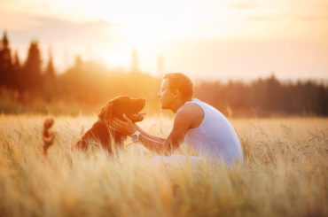 8 IMPORTANT THINGS TO KNOW BEFORE OWN A PET